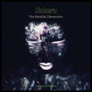 Nuboru – The Parallel Dimension